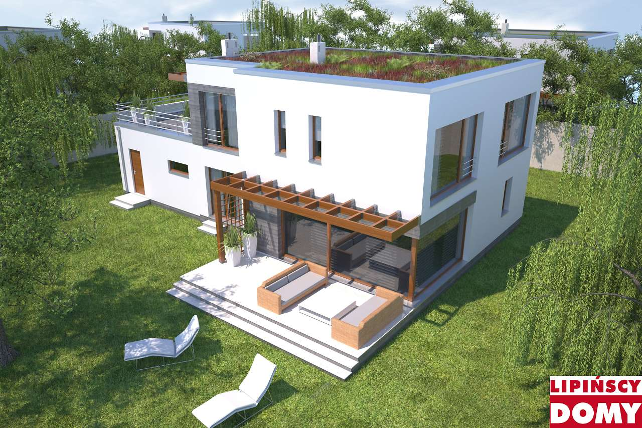 zielony dach w projekcie Belfast II dcp268a biura Lipińscy Domy